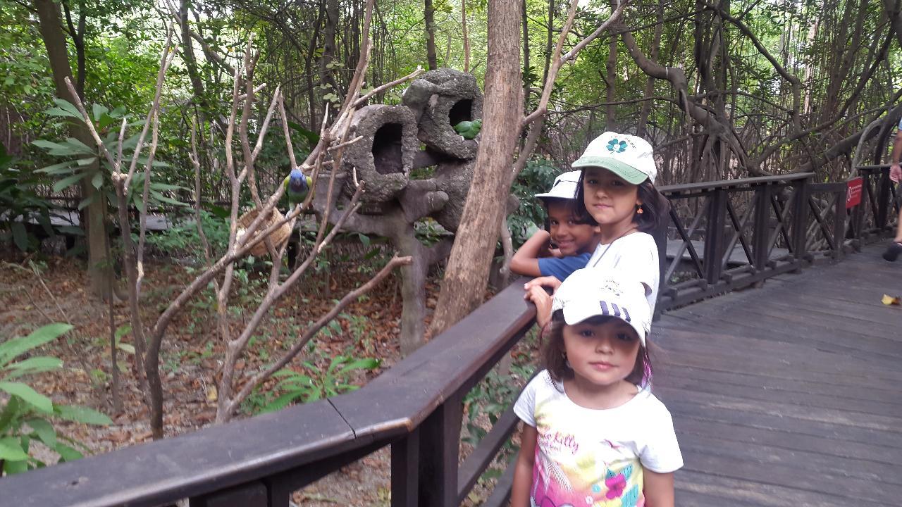 Visite du Parc Historique de Guayaquil (et animalier)