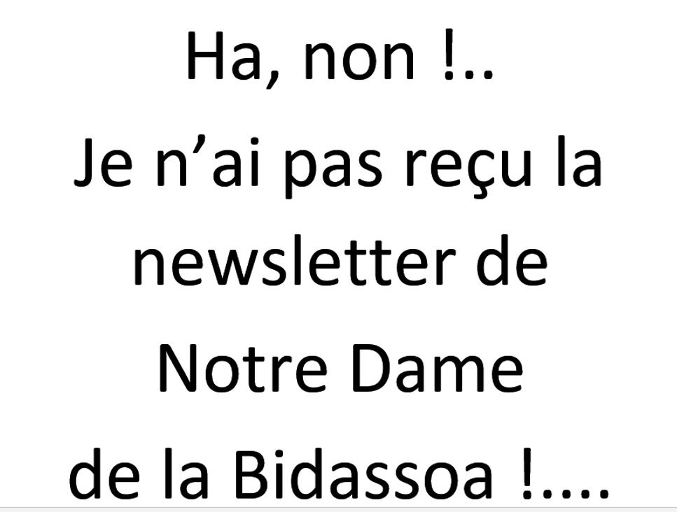 Si le vendredi, je n'ai pas reçu la newsletter, je peux quand même voir les articles !...