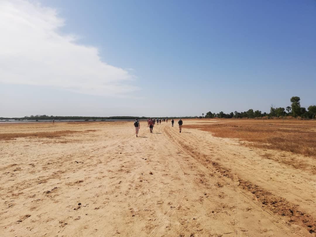marche desertique.jpg