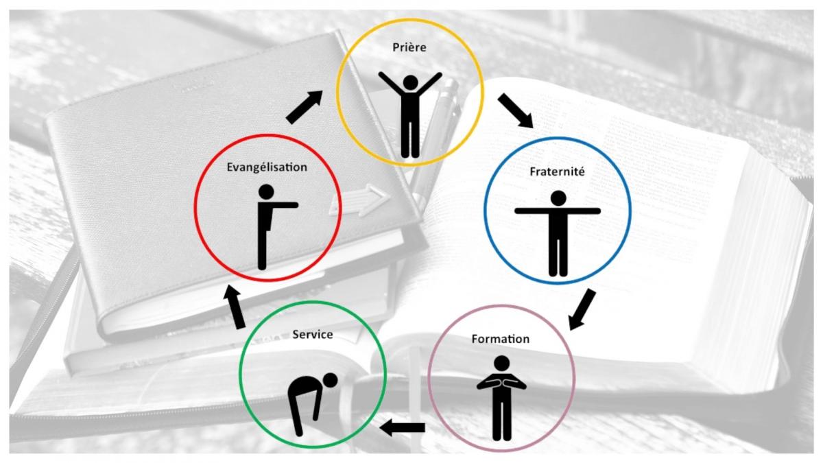 Les cinq essentiels.jpg