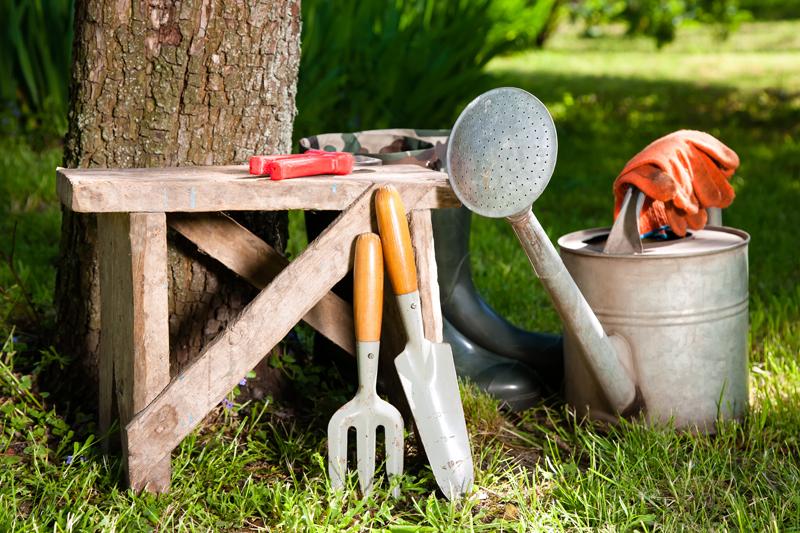 Come realizzare l'orto in casa