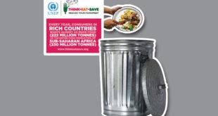 Giornata Mondiale dell'Ambiente 2013