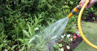 lavori in giardino con il Bonus verde