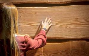 Design con il legno
