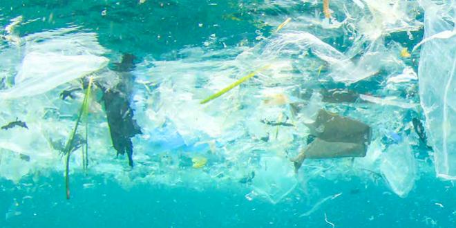plastica galleggiante