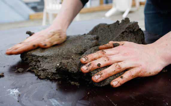 arredi alghe suppellettili | processo di lavorazione alginato