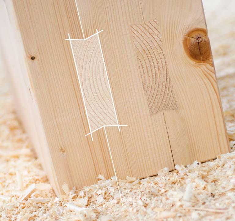 legno Holzius