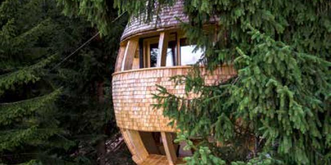 casa in legno immersa nel verde | novità ecosostenibili e bioarchitettura