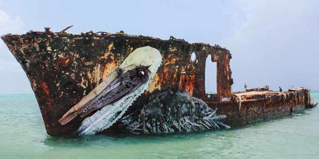 murales pellicano | mostra Big Trash Animals