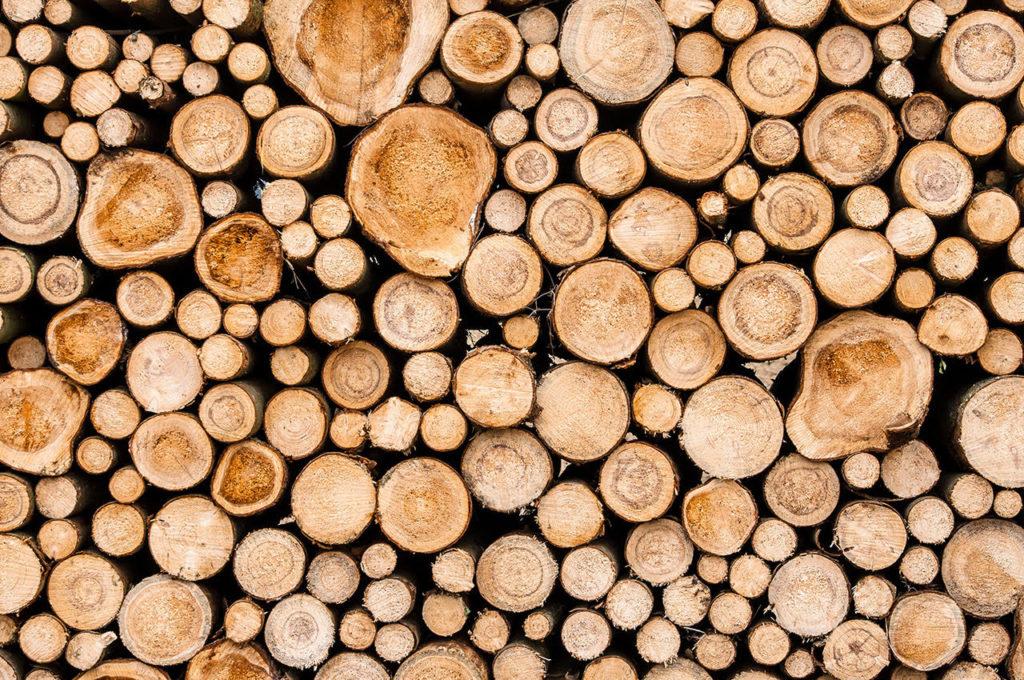riscaldamento: scaldarsi con il legno | legna e pellet