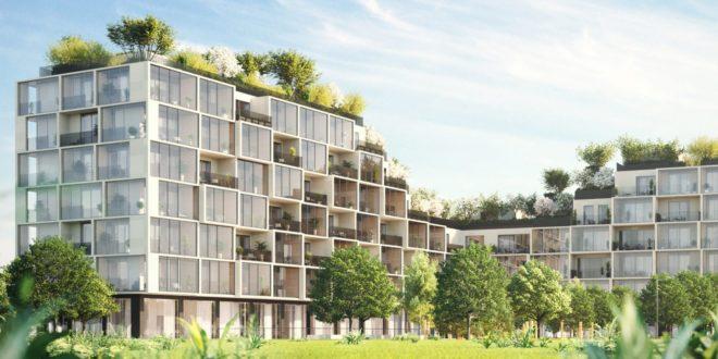 Il progetto del Palazzo Verde di Anversa