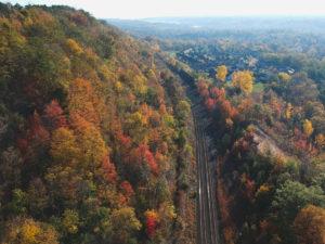 Turismo arboreo | treno del foliage