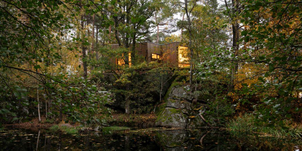 Norvegia   Snøhetta   ospedale nel bosco   guarire nel verde   alberi