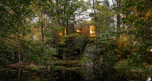 Norvegia | Snøhetta | ospedale nel bosco | guarire nel verde | alberi