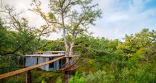 Abitare sugli alberi | casa sull'albero yoki | artistree