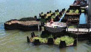 Economia circolare | Orto galleggiante