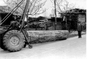 Bruno parquet | rinnova | nuova collezione | legno | quattro generazioni | foto storica in bianco e nero