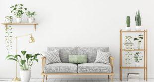 urban jungle | arredare | natura | piante | divano