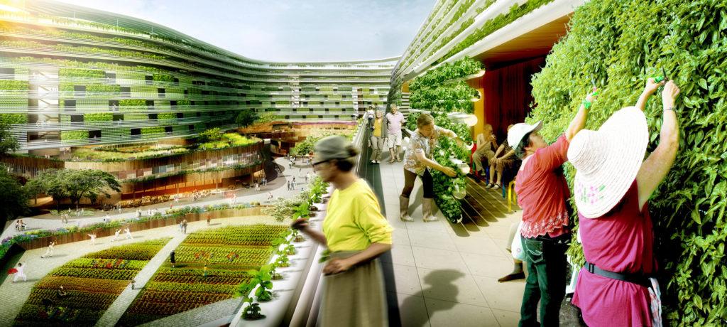 Homefarm, a Singapore il progetto di una fattoria urbana e casa di riposo