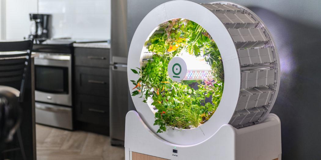 ogarden | giardino in casa | orto in casa| domotica | innovazione