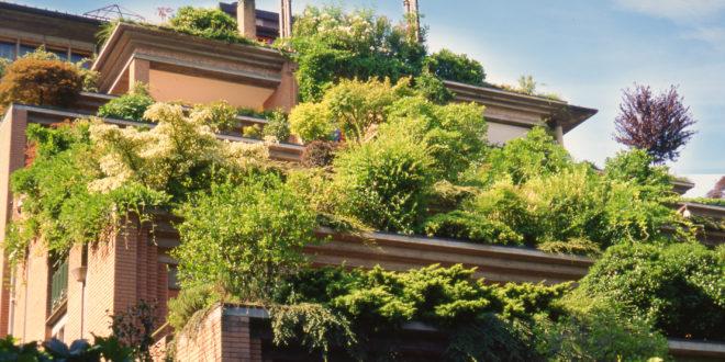 verde sui tetti | giardini pensili | verde in città | alta quota