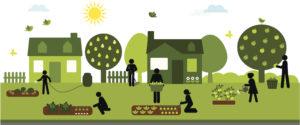 verde | orti urbani | coltivare la città | salubrità e condivisione | progetto