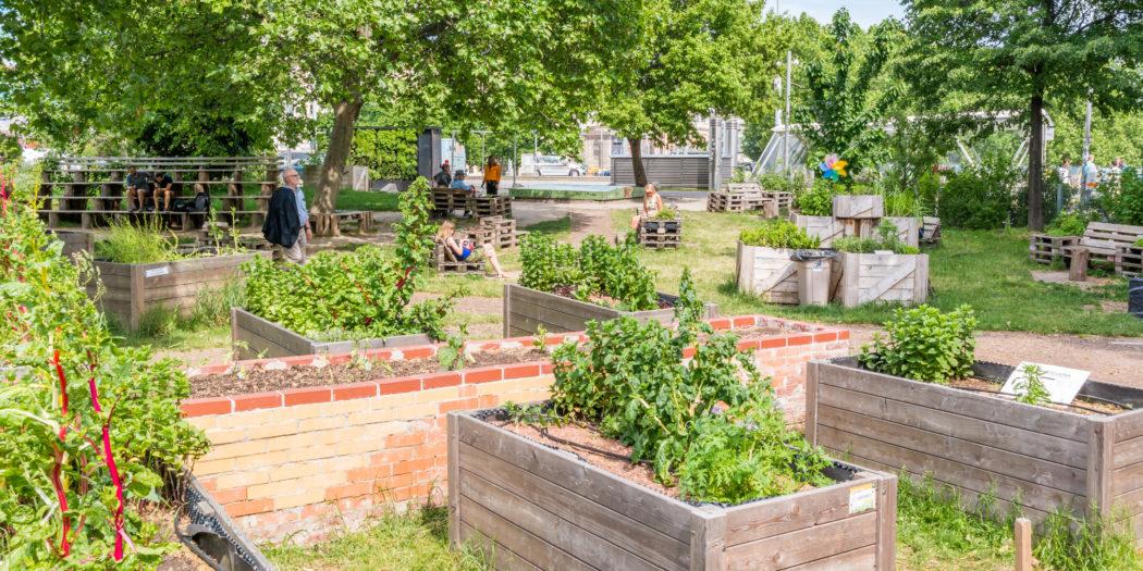 verde | orti urbani | coltivare la città | salubrità e condivisione