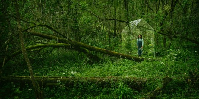 Velux campagna generazione indoor | passare il tempo nella natura
