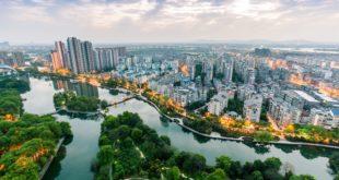 avanguardie | foreste nelle città | cambiamento climatico | alberi