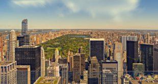 green roofs a new york | tetti verdi | riduzione co2 | green attitude | sostenibilità