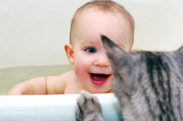 gatto-e-bebè