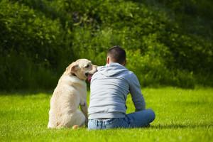 i-cani-intuiscono-i-comportamenti-degli-uomini