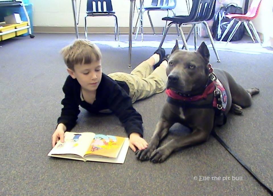 Elle ed un bambino con difficoltà di lettura