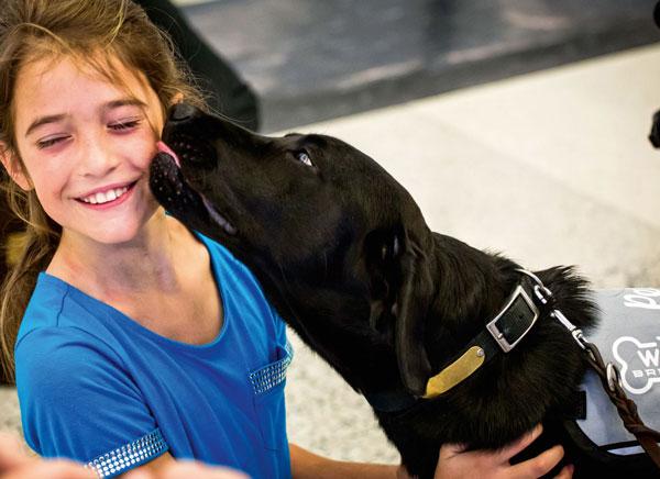I cani-dottori dell'aeroporto americano di San Francisco,