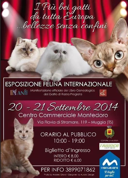 Locandina Esposizione Internazionale Felina di Trieste