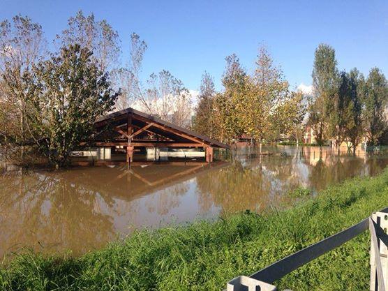 Il Parco Canile di Milano dopo l'alluvione