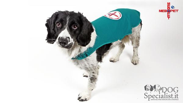 Dogspecialist presenta il copri medicazione Medipet