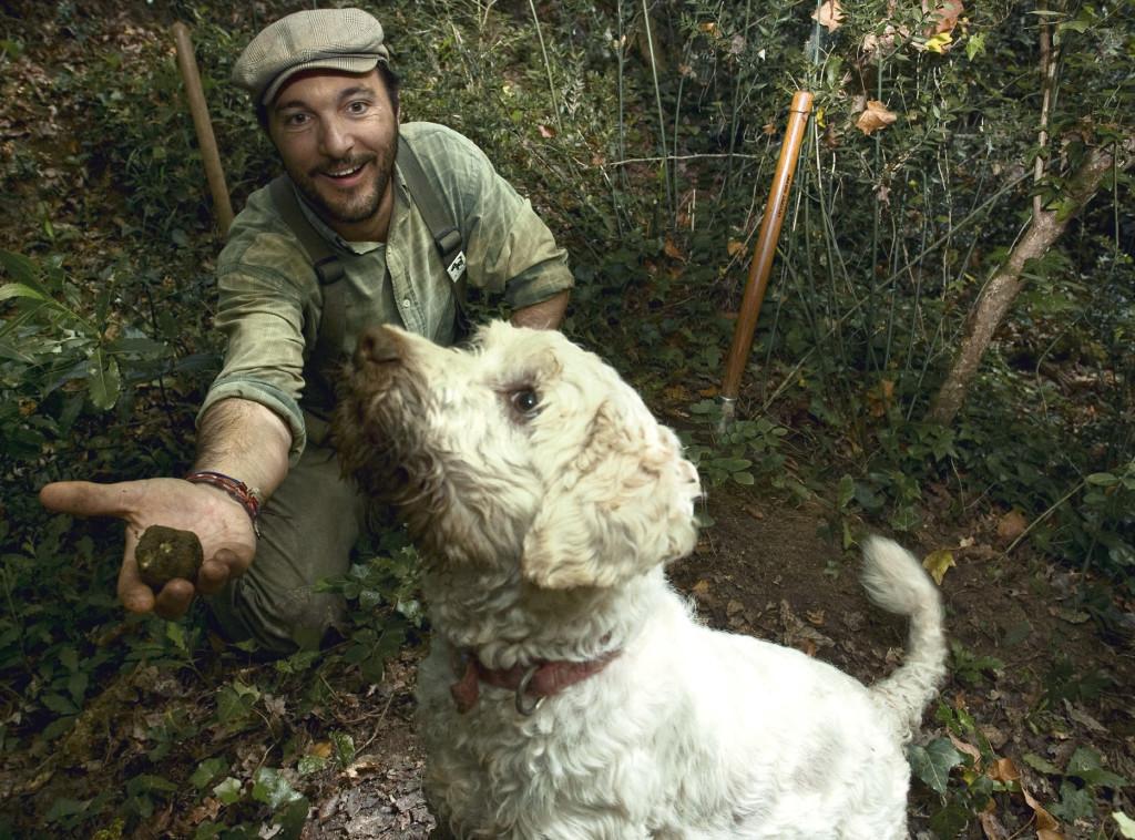 Giotto, il cane scova tartufi