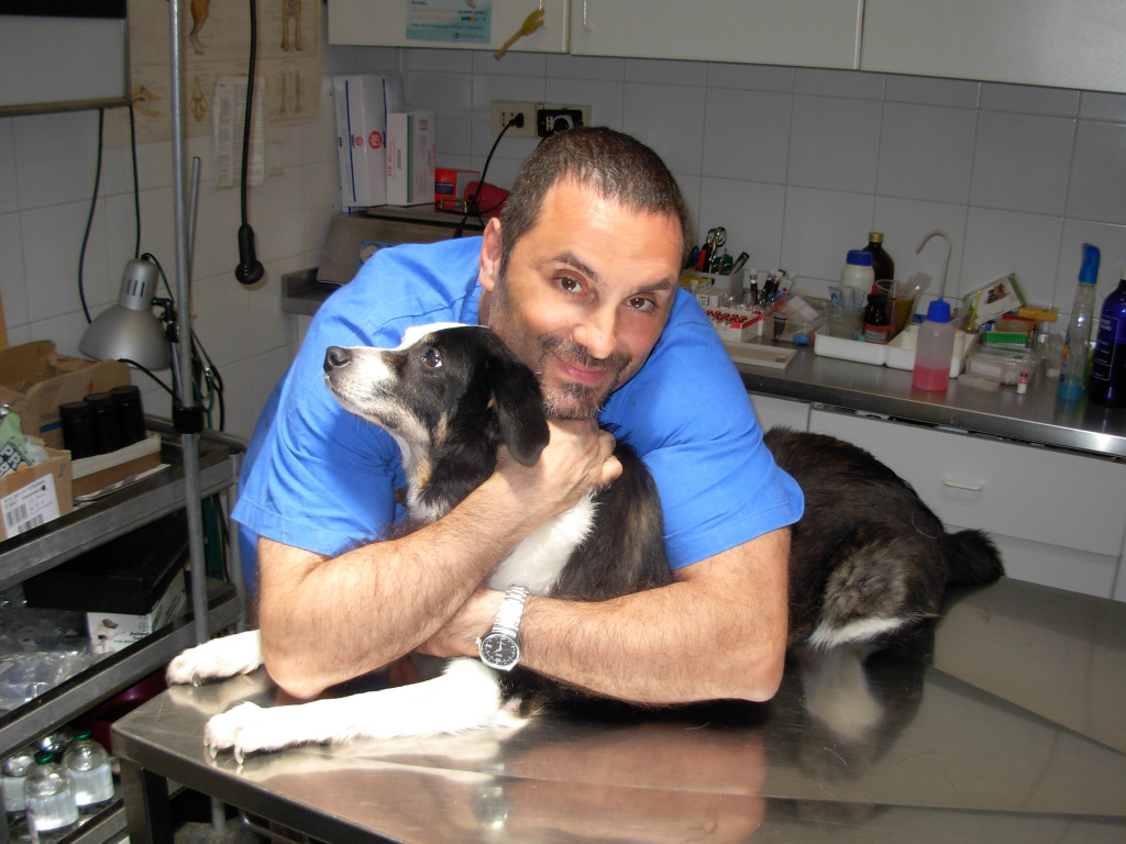 Alessandro Arrighi Veterinaria