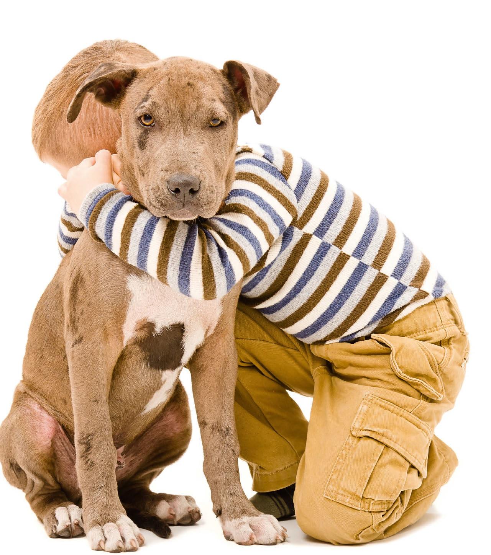 bambino abbraccio cane