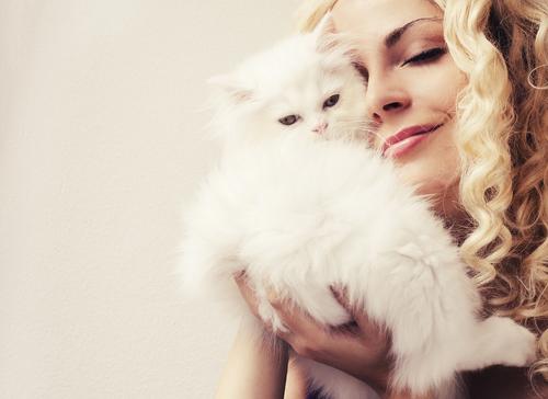 Comportamenti dei gatti che ci fanno bene