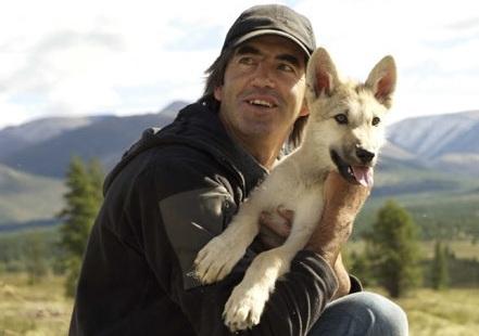 addestrare lupi