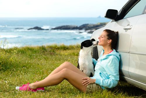 viaggiare pet friendly