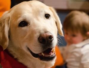Lucky il cane da Pet Therapy