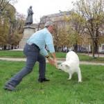 Giuseppe non ha più paura dei cani