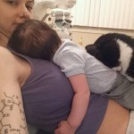 Gatti e neonati: Panda e Sean