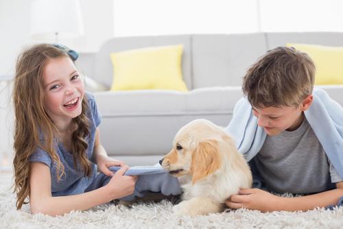 Come comunica il cucciolo