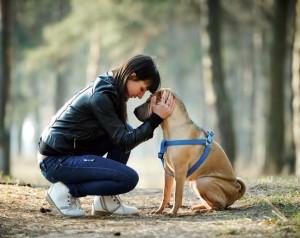 Rapporto con il cane