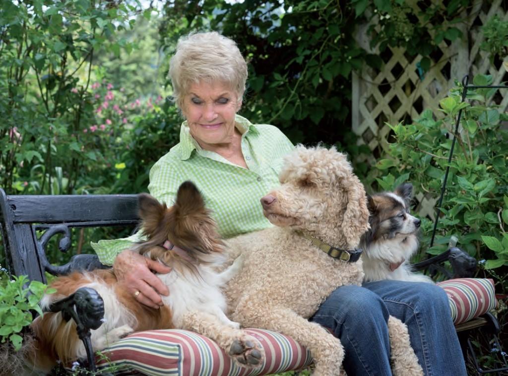 Dogsitter e pet sharing