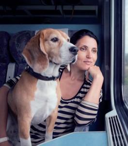 viaggiare-con-il-cane (2)
